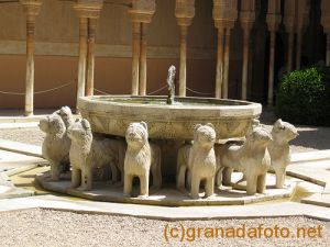 Courtyard of Lions - fountain