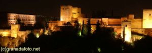 Alhambra at night (6)