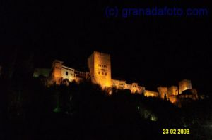 Alhambra at night (5)
